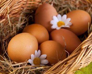 Куриным яйцом