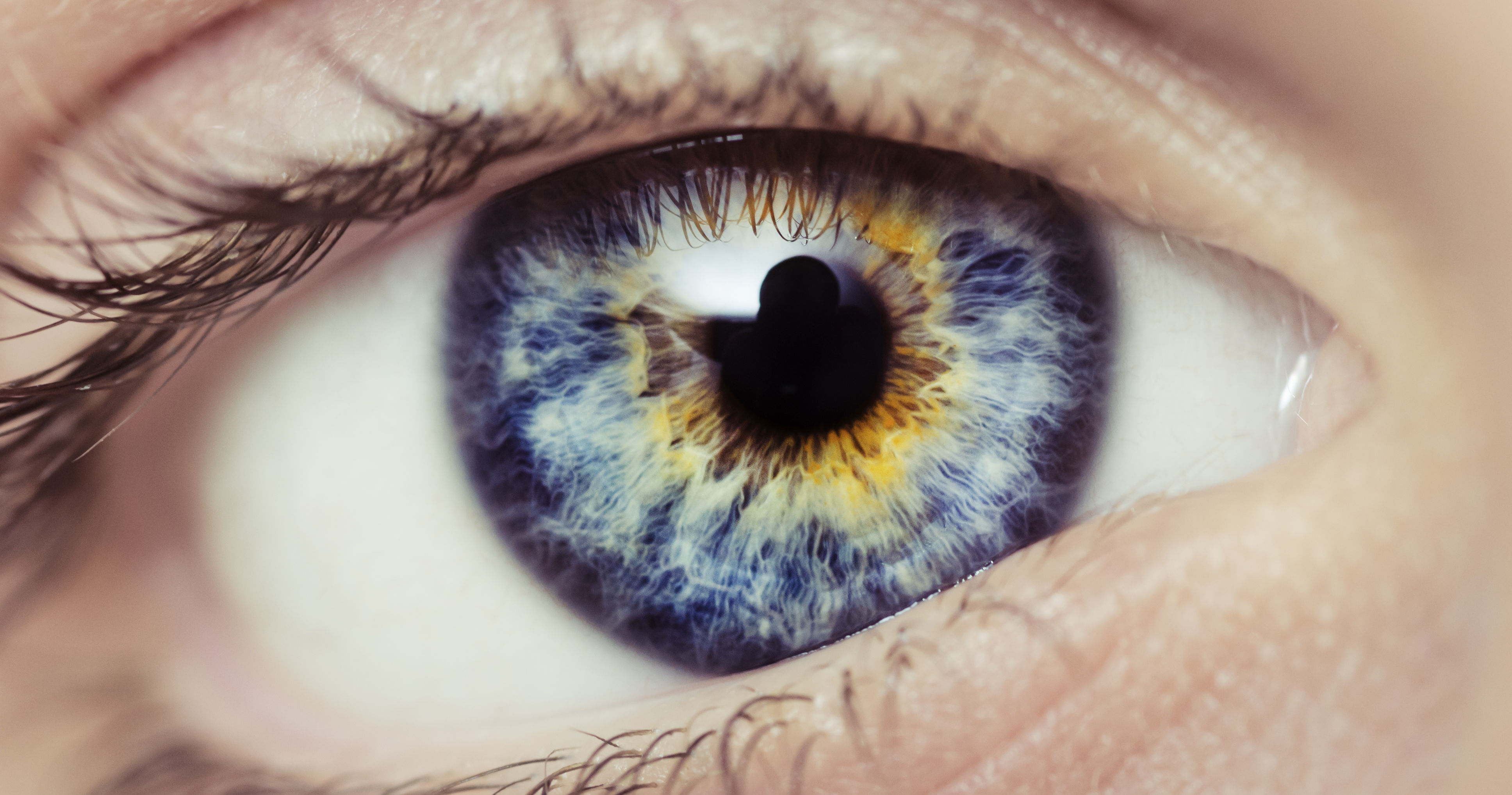 Картинка со цветом глаз