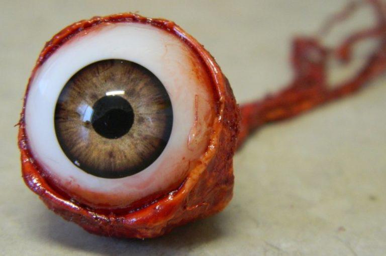 глаз человека в разрезе фото имеет звенья